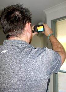 thermal pest inspections ipswich